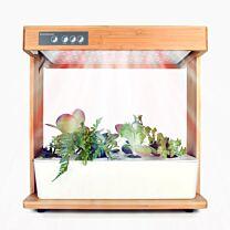 Nutrimist Otto Indoor Garden 1