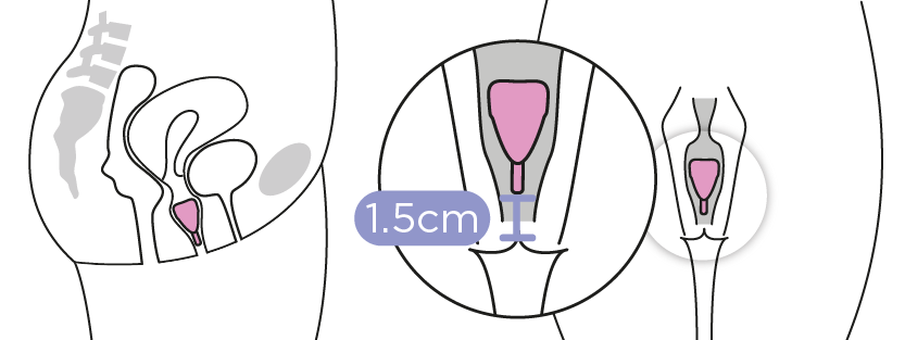 Kegel8 Menstrual Cup position