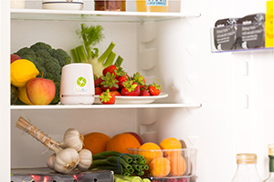 FitAir Oxy Lifestyle Fridge