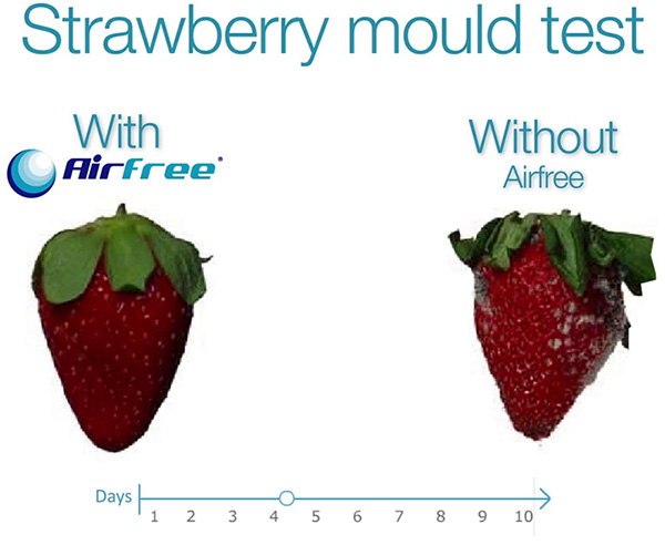 Strawberry test