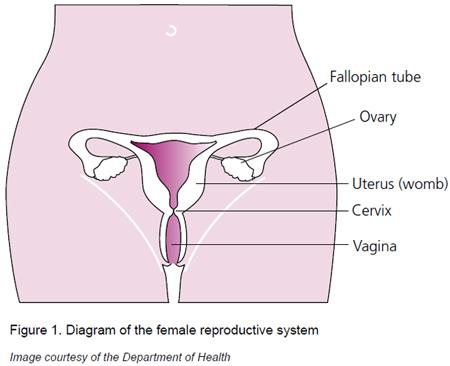 Cervical Cancer Prevention Week
